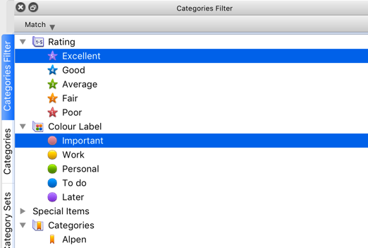XnView MP 0.93.1 - Categories Filter - bug.png